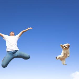 Dog Cancer Survivor Grateful for Veterinarians Advice