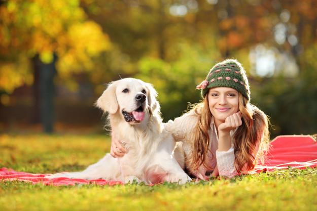 ALERT: Popular Pet Product Killing Dogs