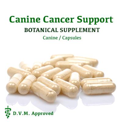 Dr. Carol's Canine Cancer Support