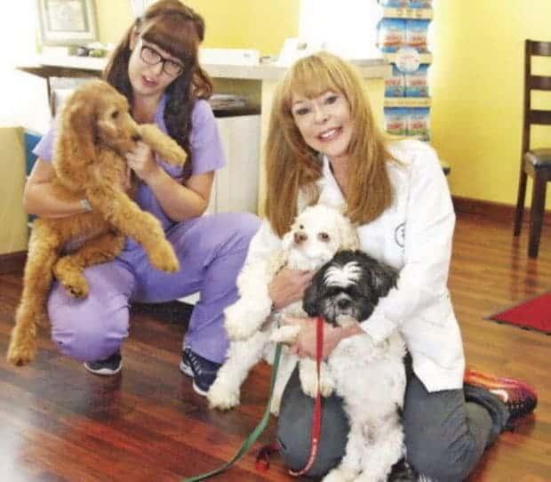 Cleveland.com Features Chagrin Falls Pet Clinic