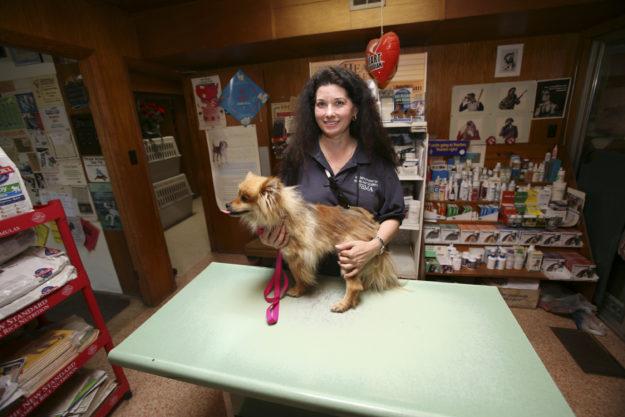Veterinary Specialist