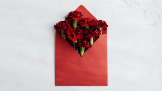 Valentine's Day pet safety tips from Dr. Carol Osborne